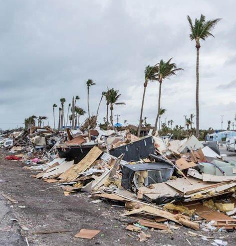 Piled up hurricane debris under palm trees.
